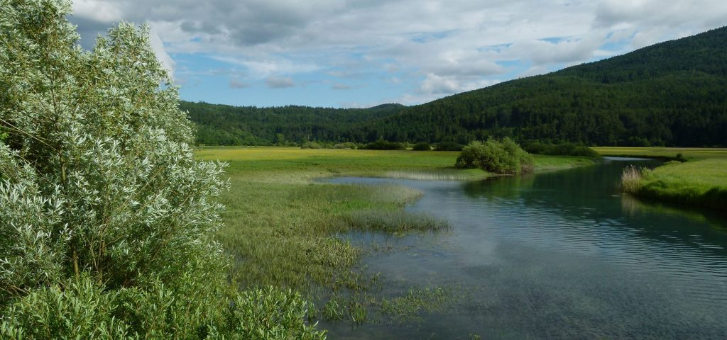 Lake Cerknica in Slovenia, during the wildlife tours of Nature in Colour