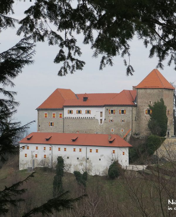 Posdreda castle in Slovenia